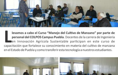 CURSO IIAS CULTIVO DE MANZANAS